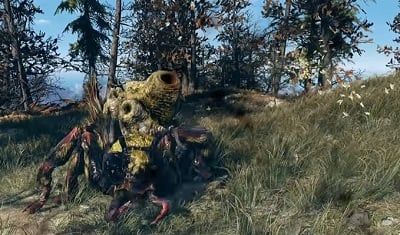 honey_beast-fallout-76-enemy-wiki-guide